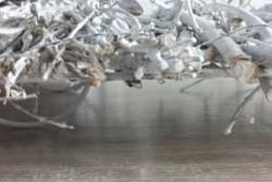 Metalen plateau met takjes