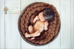 Newborn posing braid bruin