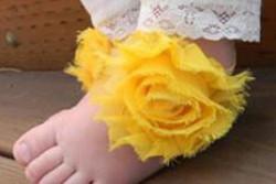 Voetbloemen geel